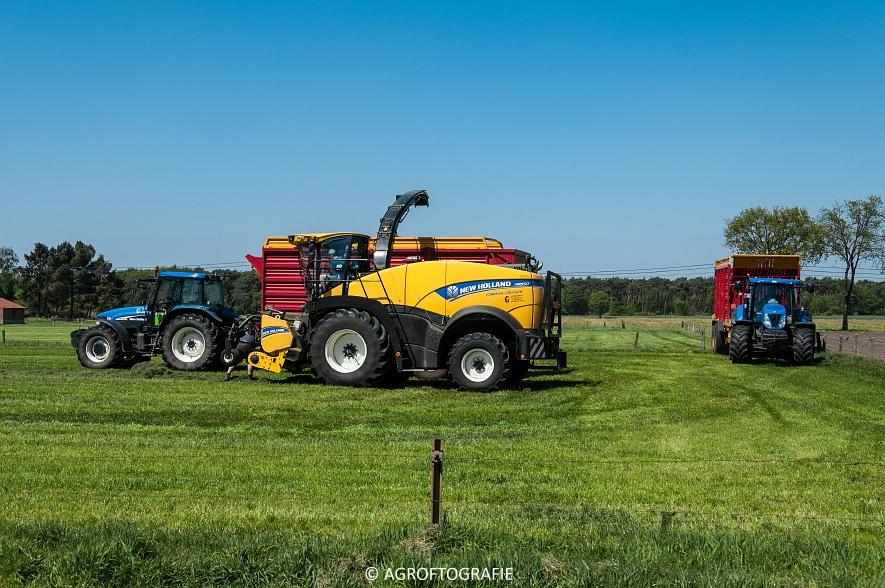 New Holland FR 850 Forage Cruiser (Geutjens, gras, 08-05-2016) (4 van 74)jpg