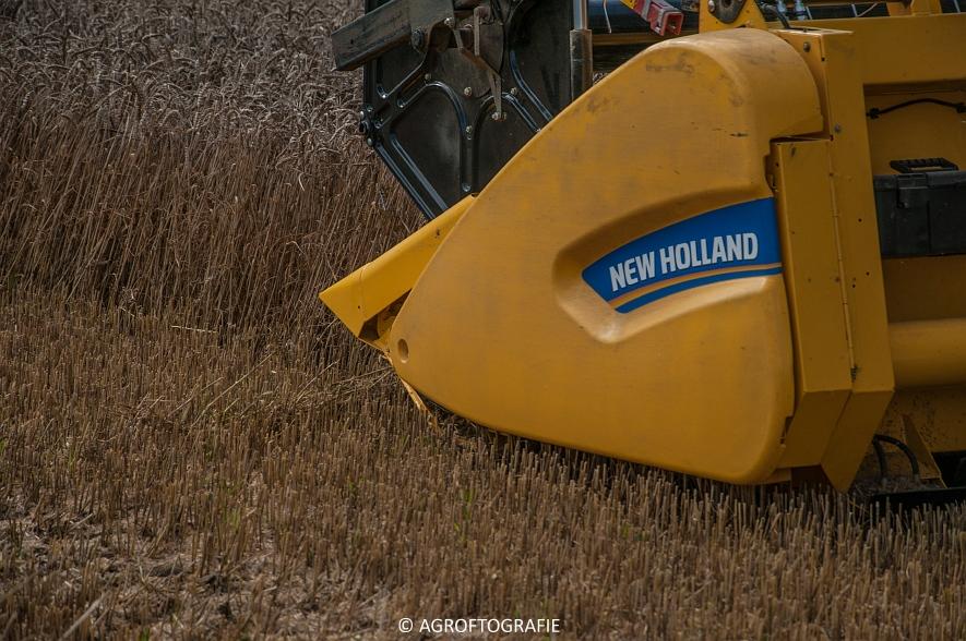 New Holland CX 8 80 (Graan, Fuchs, 13-8-16) (21 van 49)jpg