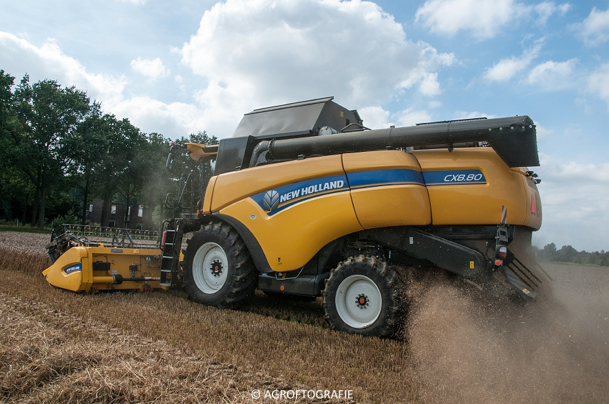 New Holland CX 8 80 (Graan, Fuchs, 13-8-16) (22 van 49)jpg