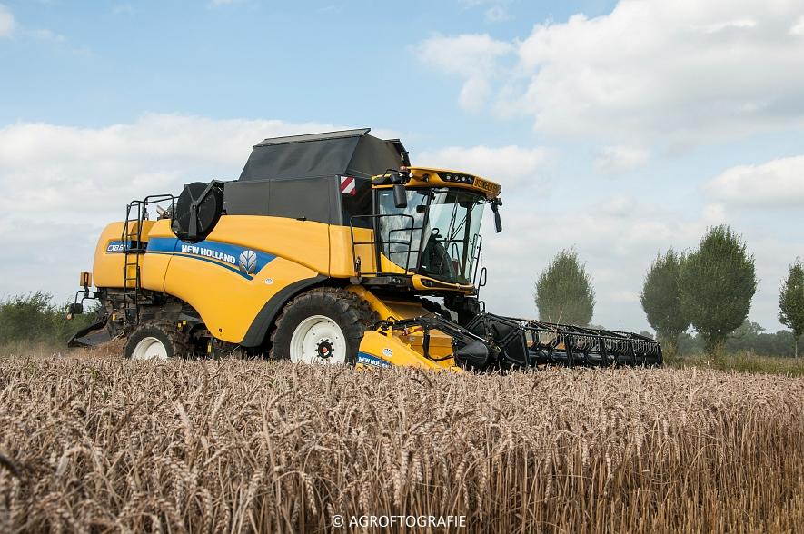New Holland CX 8 80 (Graan, Fuchs, 13-8-16) (33 van 49)jpg