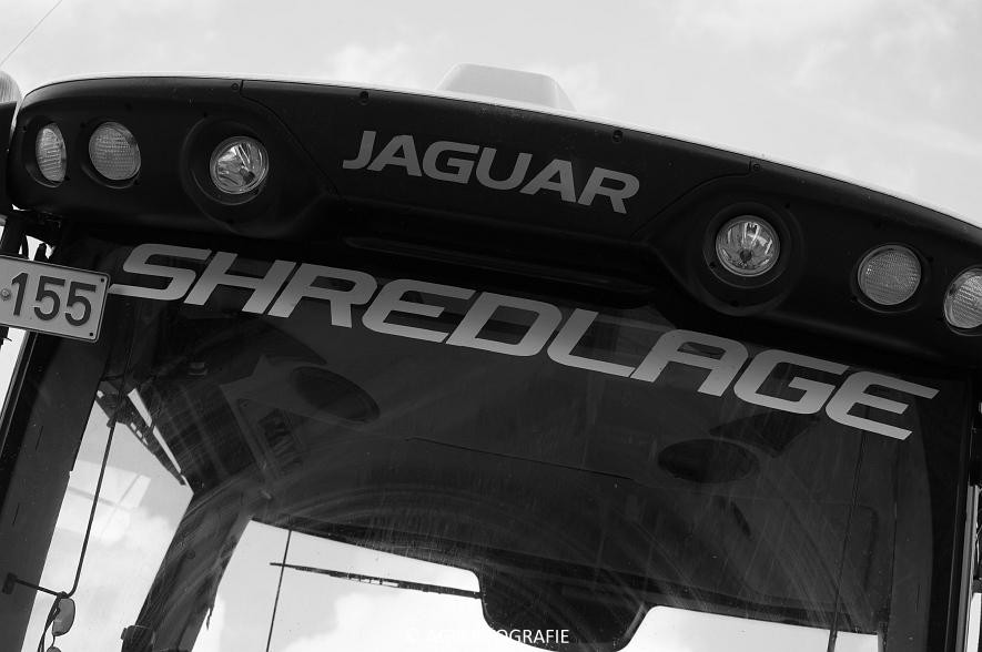 claas-jaguar-960-kemper-375-plus-jcb-435s-mais-16-09-2016-83-van-86jpg